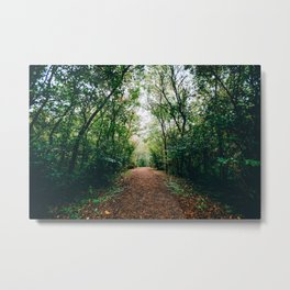 Wait in the Forest Metal Print