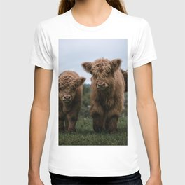 Scottish Highland Cattle Calves - Babies playing II T-shirt