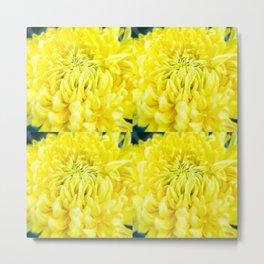 Fiesta Yellow Large Metal Print