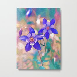 Colorado Columbine Flower Metal Print