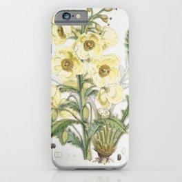 Satin Nepal Poppy Plant Vintage Illustration iPhone Case