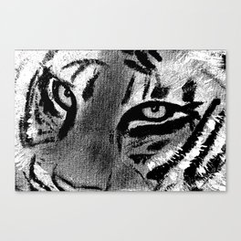 Tiger Eyes - White Canvas Print