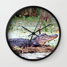 Alligator, Sunning on Rock Wall Clock