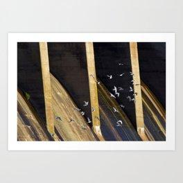 Dam Flock Art Print