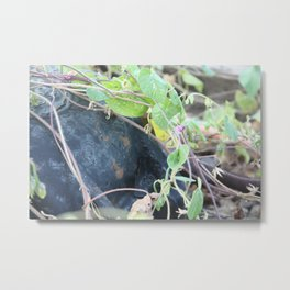 The Way They Want Metal Print