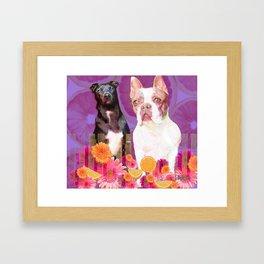 Buddha and Izzy Framed Art Print