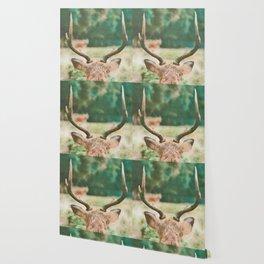 Deer head watercolor painting Wallpaper