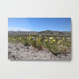 Desert Wildflowers Metal Print