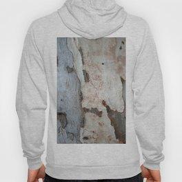 Bark Of A Eucalyptus Tree Hoody
