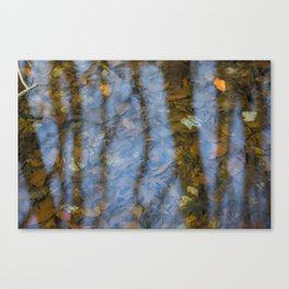 Autumn leaves in a winter stream Canvas Print