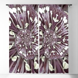 Hellebore Spiral - Abstract Photographic Art by Fluid Nature Blackout Curtain