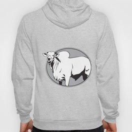 Bull zebu vintage logo Hoody