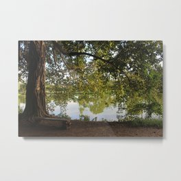 A bench under a tree Metal Print