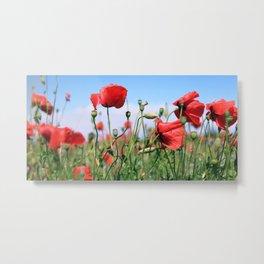 poppy flower no13 Metal Print