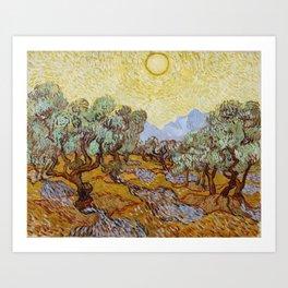 Vincent Van Gogh Olive Trees Art Print