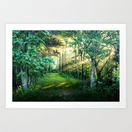 In the morning and amazing Art Print