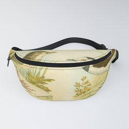 Vintage Print - Birds of South Australia (1910) - Australian Pipit / White-Fronted Chat Fanny Pack