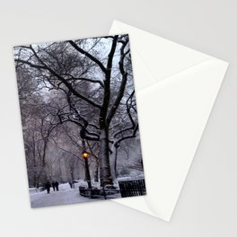 Winter Time in Madison Square Park Stationery Cards