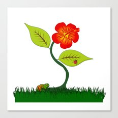 Plant and flower Canvas Print