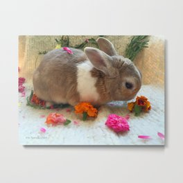 Bunny Eating Edible, Organic Flowers Metal Print