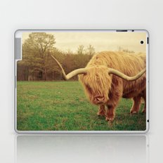 Scottish Highland Steer - regular version Laptop & iPad Skin