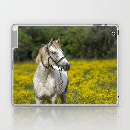 Gray Horse in a Field of Yellow Mustard Laptop & iPad Skin