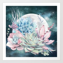 Beautiful Succulents Full Moon Teal Pink Art Print