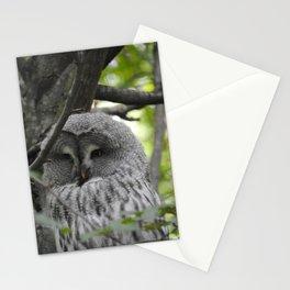 Owl Ways Stationery Cards