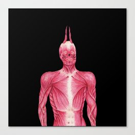 Tight Muscle Canvas Print