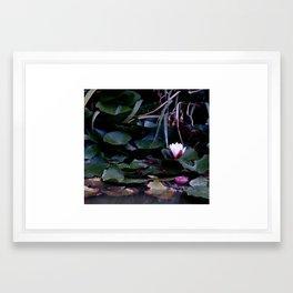 apple in the pond Framed Art Print