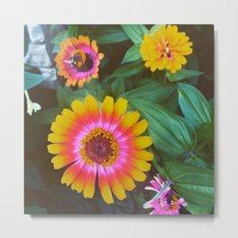 Rainwater flowers orange Metal Print