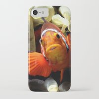 nemo iPhone & iPod Cases featuring Nemo  by RevatiN