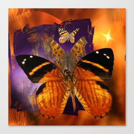 Honey Butterfly Canvas Print