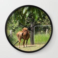 Beautiful miniature horse mare Wall Clock