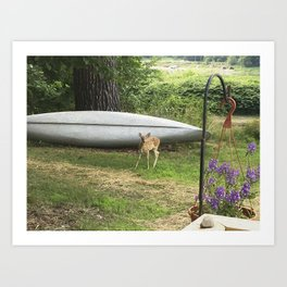 Curious Spotted Fawn Art Print