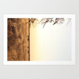 african tranquil photography Art Print
