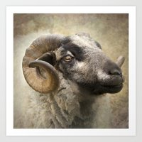 ram Art Prints featuring Ram by Pauline Fowler ( Polly470 )