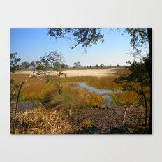 Beautiful Swamp Canvas Print