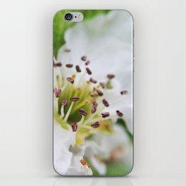 Stamen iPhone Skin