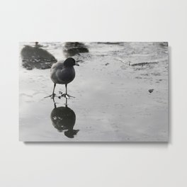 Reflection2 Metal Print