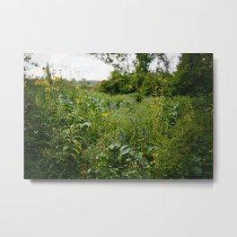 Flowers XV // Ohio Metal Print