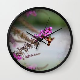 Hummingbird Sphinx Moth in Phlox Wall Clock