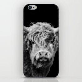 Highland Cow Black And White iPhone Skin