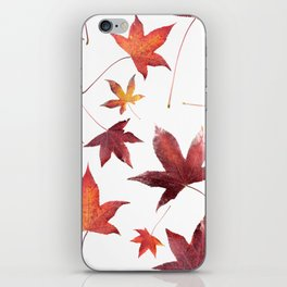 Dead Leaves over White iPhone Skin