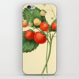 THE BOSTON PINE STRAWBERRY iPhone Skin