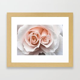 Rose with two centres | Blush Pink Bedroom Art Framed Art Print