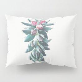 Flowering Succulent Pillow Sham