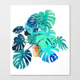 Monstera || Canvas Print