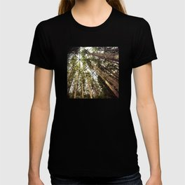 The Canopy T-shirt