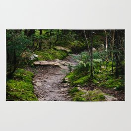Winding Forest Trail Rug